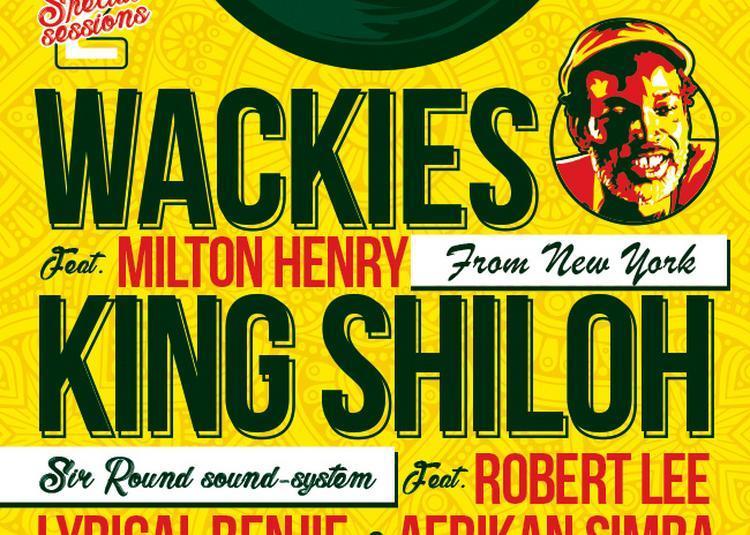 King shiloh à Vitrolles