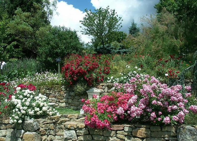 L'abbaye En Roses à Simiane la Rotonde