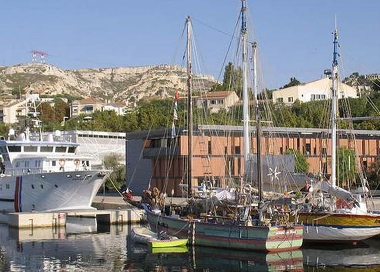 L'archéologie Sous Les Eaux : à La Découverte Du Patrimoine Englouti à Marseille