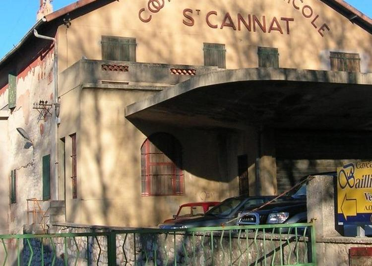 L'architecture Vinicole à Saint Cannat
