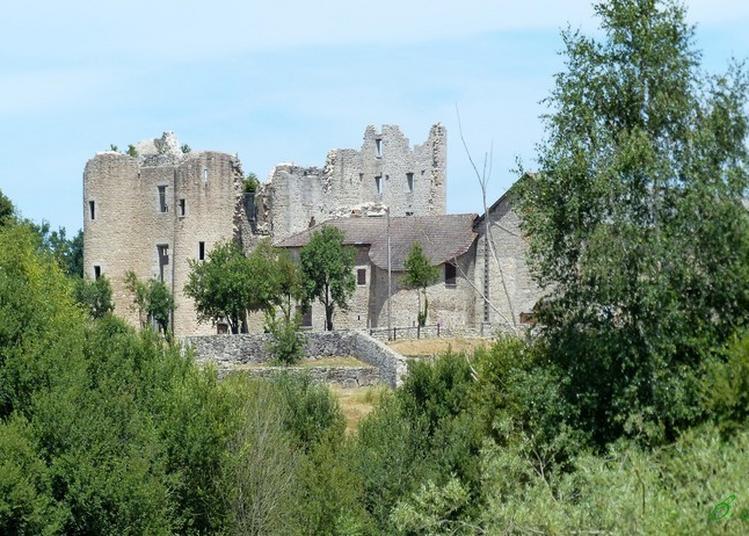 L'avenir D'un Passé Prestigieux Au Château De Naucaze à Saint Julien de Toursac