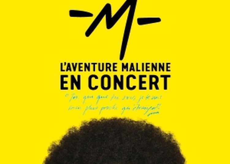 L'Aventure Malienne De -M- à Caen
