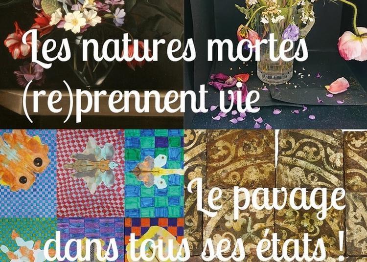 L'ecole Au Musée « Les Natures Mortes (re)prennent Vie / Le Pavage Dans Tous Ses états ! » à Troyes
