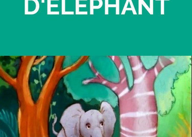 L'enfant d'éléphant à Grenoble