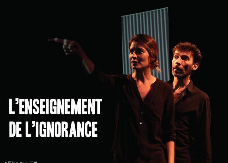 L'enseignement de l'ignorance à Avignon