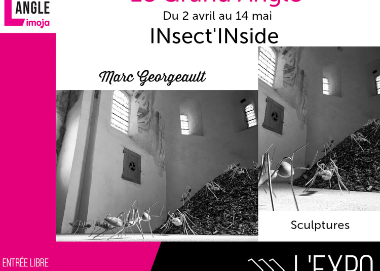 L'Expo | INsect'INside à Rennes