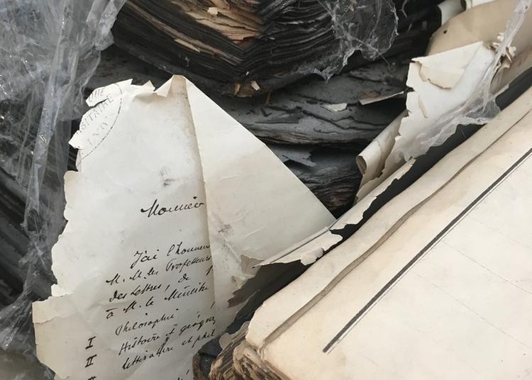 L'incendie De La Bibliothèque Centrale En 1999 ; 20 Ans Après Les Cendres...les Souvenirs à Lyon