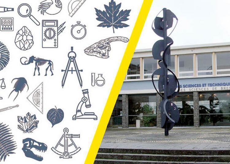 L'université De Bretagne Occidentale Dévoile Ses Collections Scientifiques à Brest