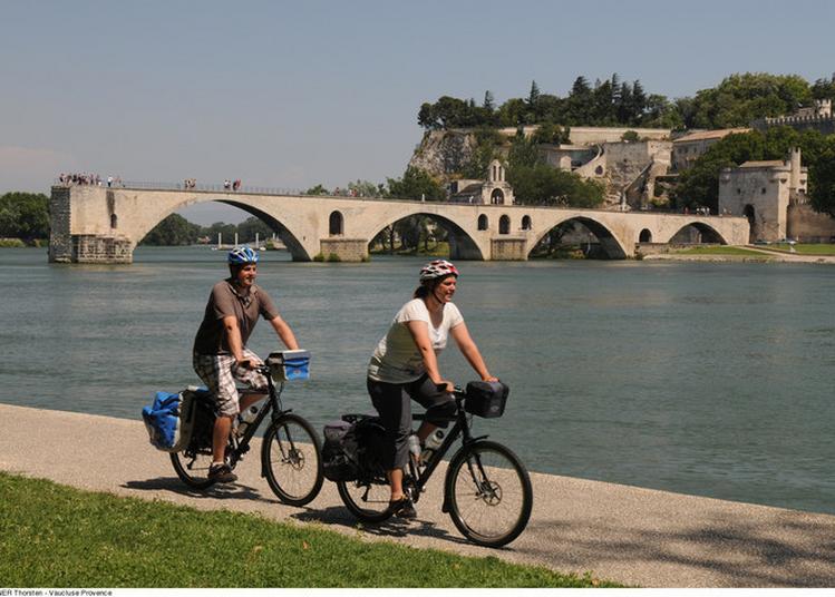 La Barthelasse à Vélo Par Avignon Tourisme