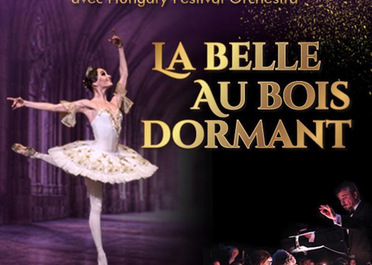 La Belle Au Bois Dormant à Paris 9ème