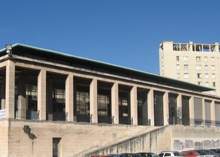 La Bibliothèque Universitaire Sort De Sa Réserve à Marseille