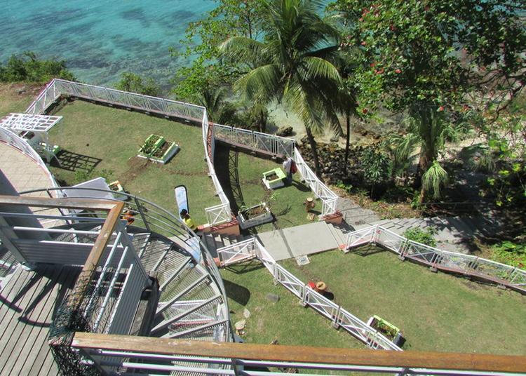 La Biodiversité De La Guadeloupe à Le Gosier