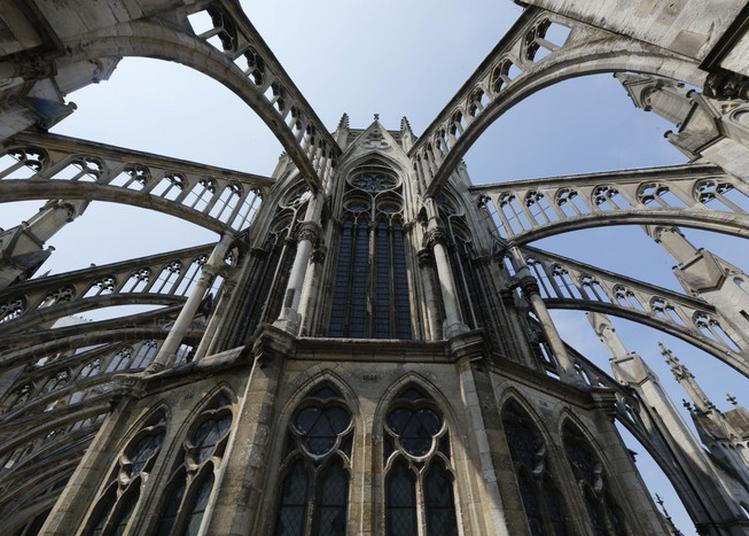 La Cathédrale Insolite : Visite Thématique à Amiens