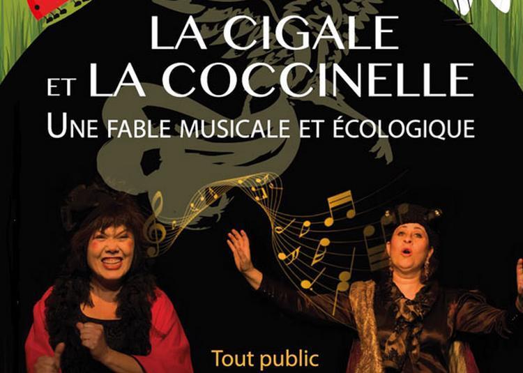 La Cigale Et La Coccinelle à Marseille