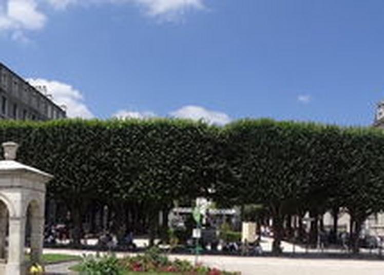 La Danse Classique S'invite Sur Le Boulevard Des Pyrénées à Pau
