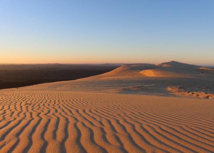 La Dune Du Pilat Au Lever Du Jour à Pyla sur Mer