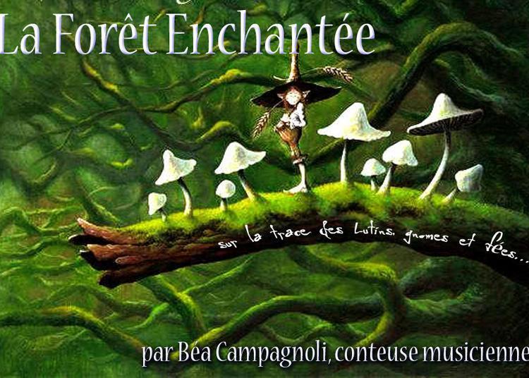 La Foret Enchantee à Avignon