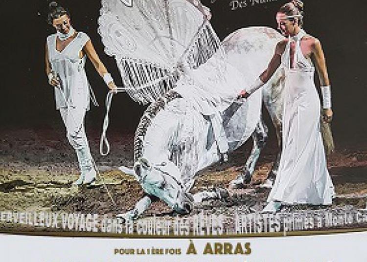 La Grande Fête De Noel Du Cirque : White à Arras