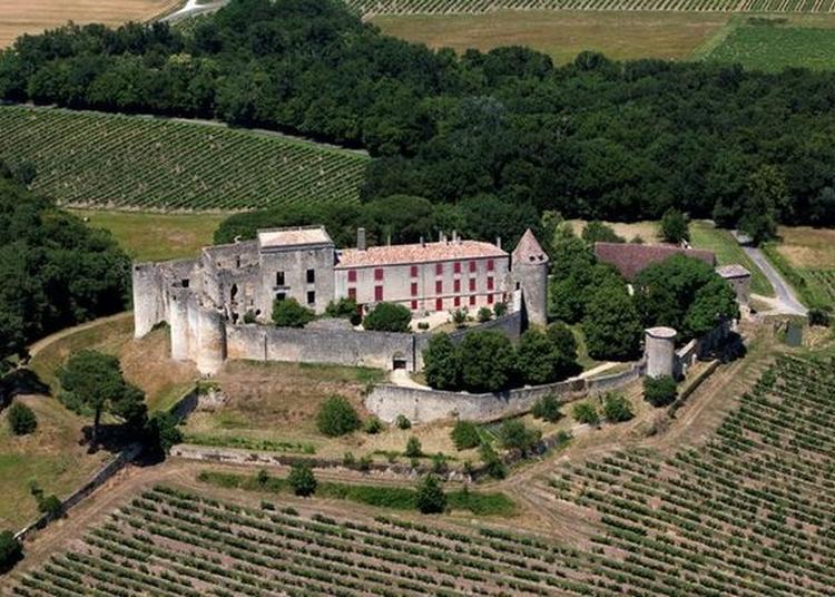 La Jeunesse Et La Sauvegarde Du Château De Benauge à Arbis