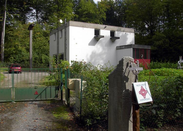La Maison Des Hybrides Patibulaires à Briey