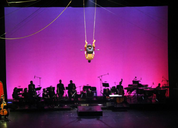 La Musique De Cirque, Cela N'existe Pas à Amiens