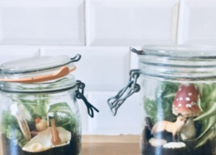 La Nature En Miniature : Atelier Créatif Pour Tous à Dole