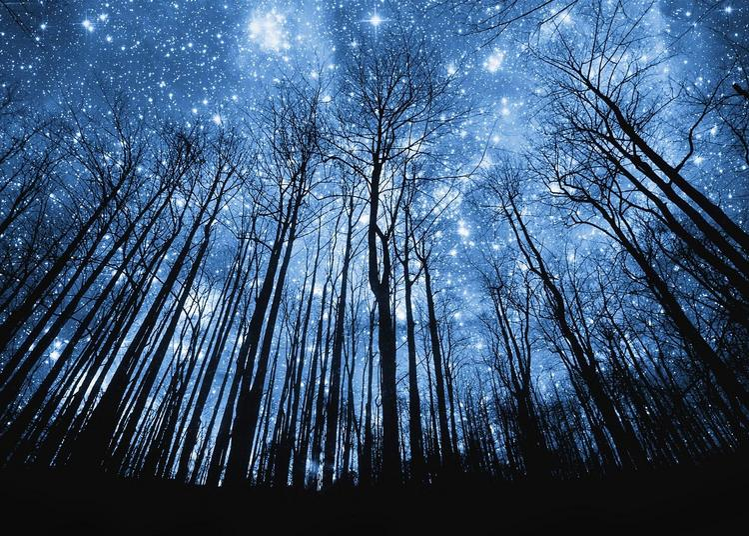 La nuit des étoiles à Petit Auverne