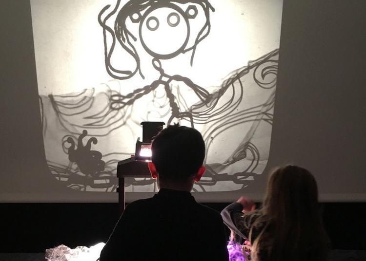 La Nuit Des Ombres... à La Lumière D'un Projecteur à Lille