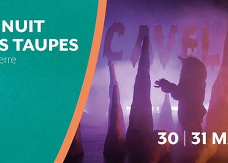 La Nuit des taupes | Carrefour à Nanterre
