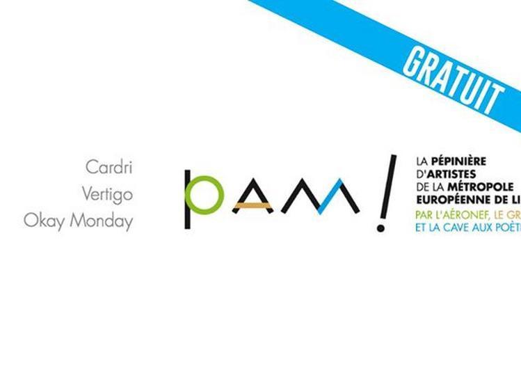 La PAM en concert : Vertigo, Okay Monday, Cardri à Lille
