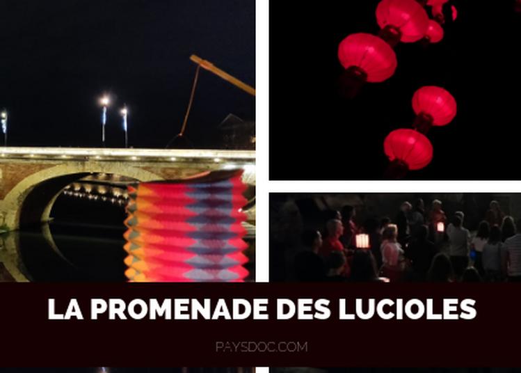 La Promenade des Lucioles à Toulouse