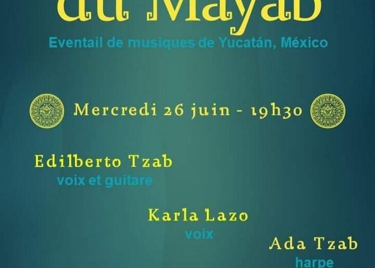 La Sérénade du Mayab - Musique mexicaine à Paris à Paris 7ème