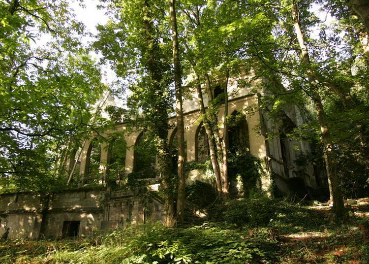 La Solitude Et La Garenne : Deux Bois Chargés D'histoire à Le Plessis Robinson