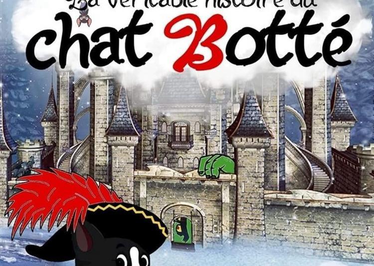 La Veritable Histoire Du Chat Botté à Nice
