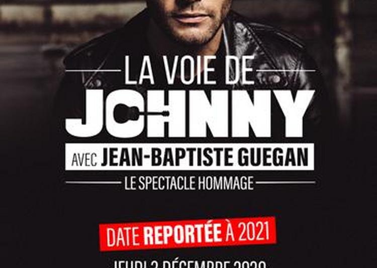 La Voie De Johnny - report à Nantes