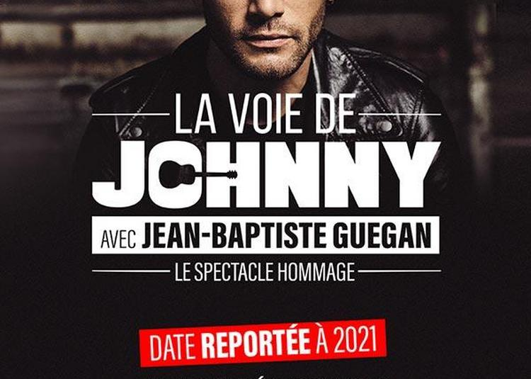 La voie de Johnny - Report à Lyon