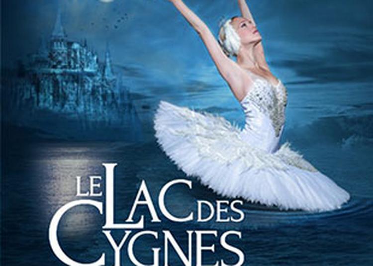 Lac des Cygnes à Orléans