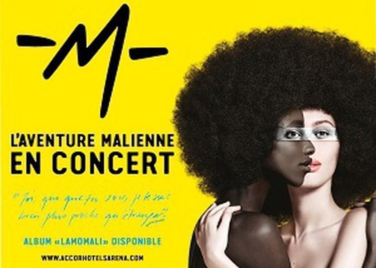 Lamomali à Paris 12ème