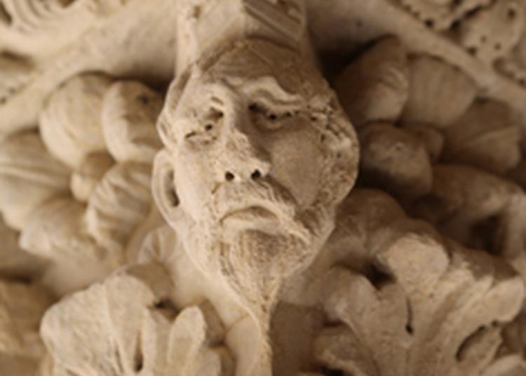 «visite Pioche» En Famille Au Cloître Saint-trophime. à Arles