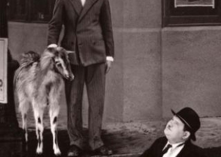 Laurel Et Hardy Entre La Chèvre Et Le Chou à Paris 13ème