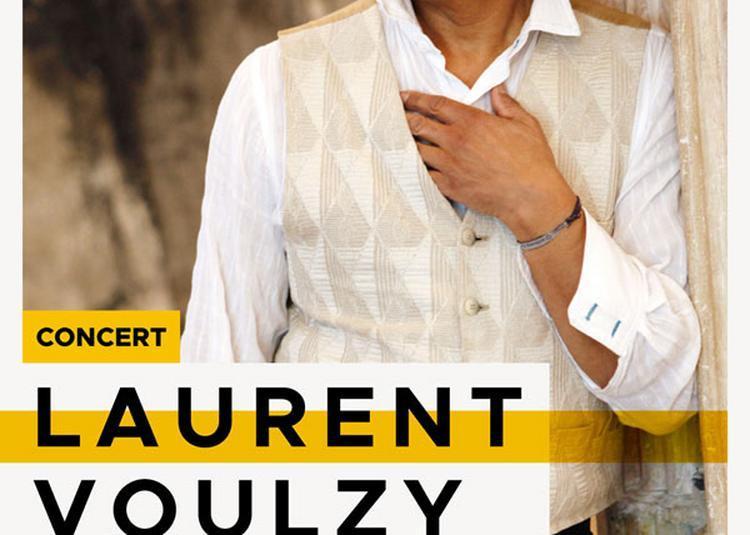 Laurent Voulzy à Chateauroux