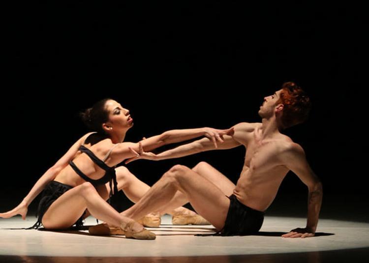 Le Ballet De Milan à La Ciotat