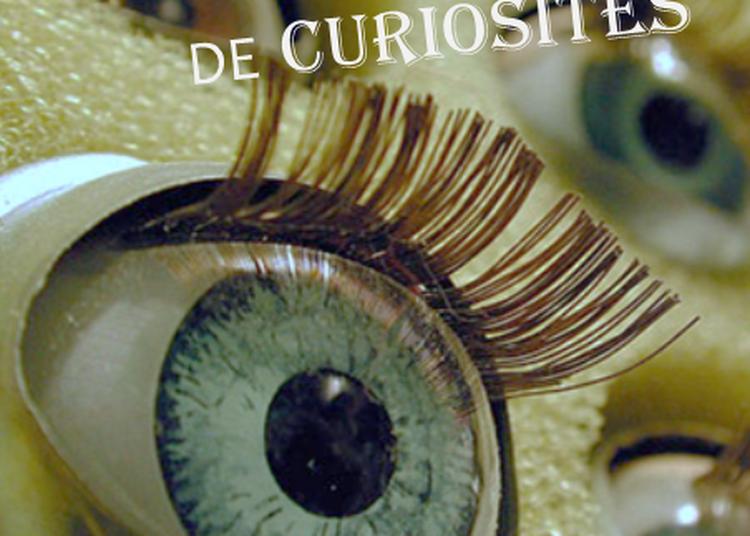 Le Cabinet de curiosités à Saint Cyr sur Loire