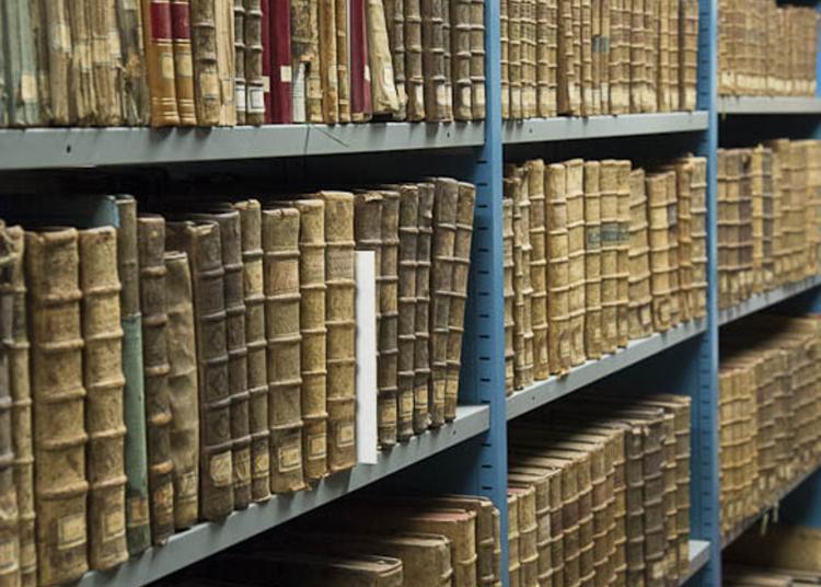 Le Cabinet De Curiosités Rêvé Des Médiathèques à Vannes