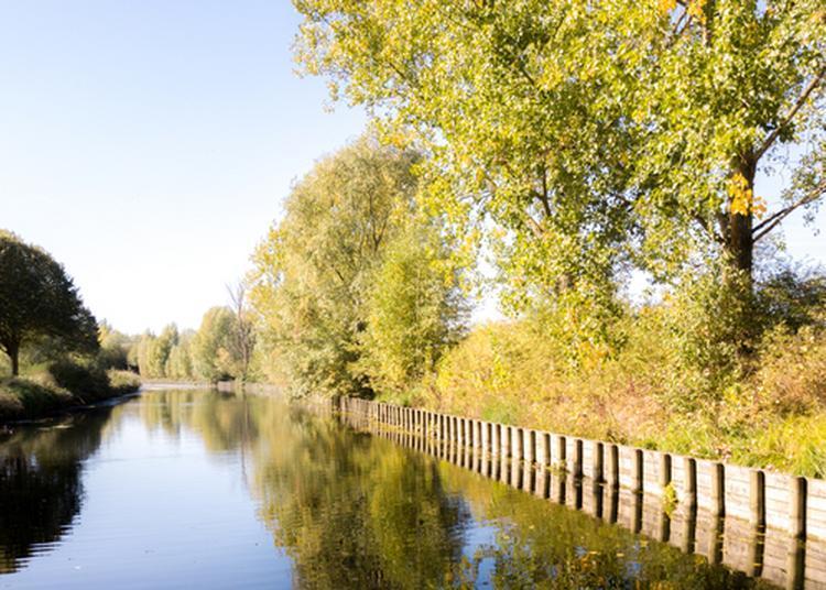 Le Canal De Roubaix : Patrimoine Culturel, Artistique Et Naturel