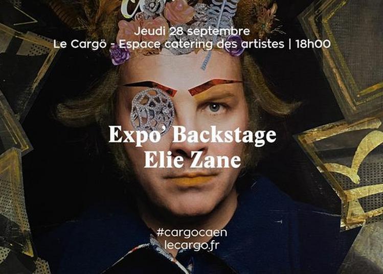 Expo' Backstage : Elie Zane à Caen