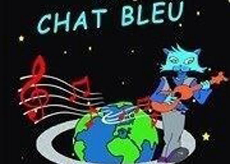 Le Chat Bleu à Lille