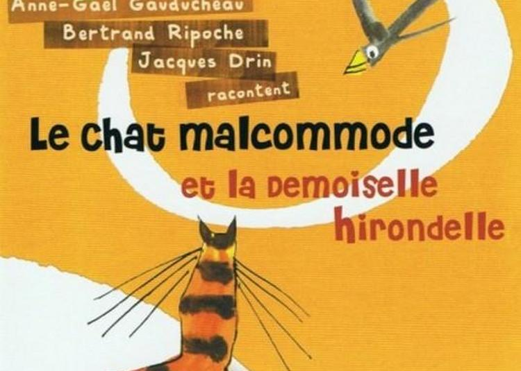 Le Chat Malcommode Et La Demoiselle Hirondelle à Paris 13ème