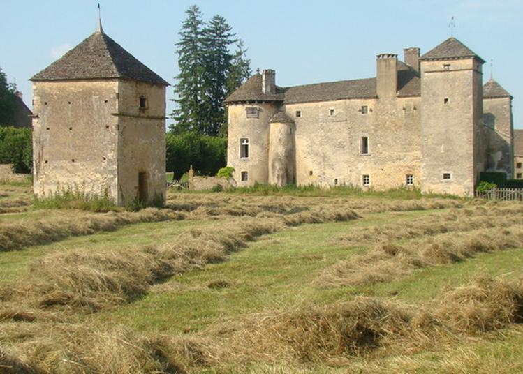 Le Château D'ozenay, Son Histoire, Ses Particularités à Ozenay