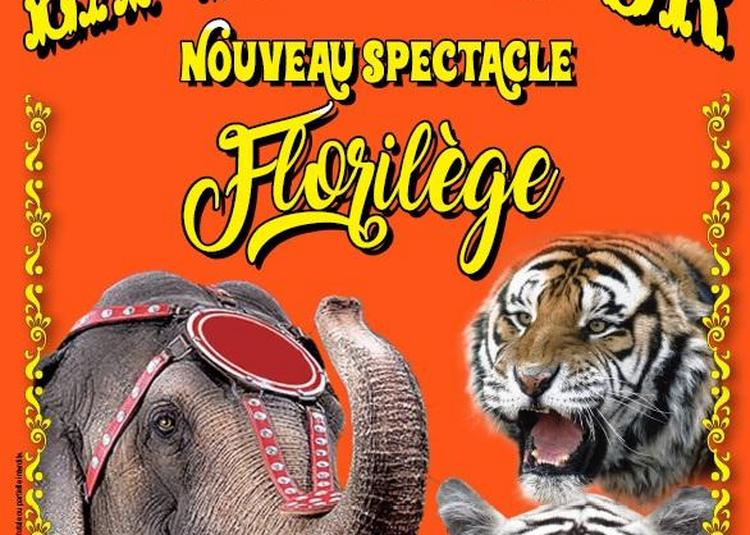 Le Cirque La Piste d'Or à Noirmoutier en l'Ile